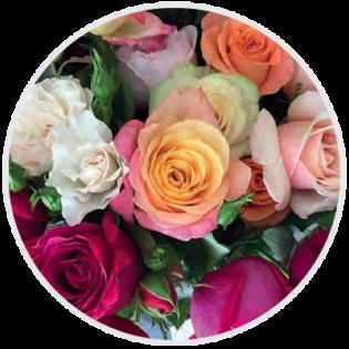 roses paris